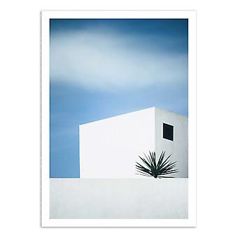 Art-Poster - Palm tree - Renate Wasinger