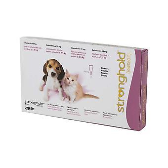 Stronghold valp og kattunger under 2,5 kg (5lbs)-6 Pack