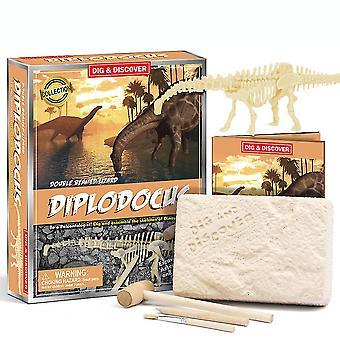 Diplodocus Fossils Science Kits Onderwijs Archeologie Biologie Verjaardagscadeau