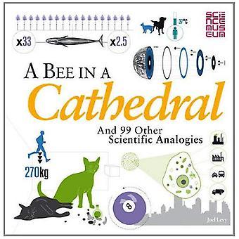 Ett bi i en katedral: och 99 andra vetenskapliga analogier (Science Museum)