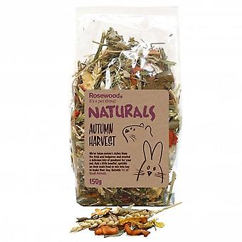 Rosewood Naturals Autumn Harvest Small Animal Treat