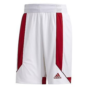 Adidas Creator 365 Short DY7378 basketball all year men trousers