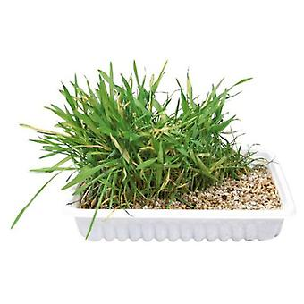 Trixie Refill Grass Cats Ref 4235 (Cats , Cat Nip, Malt & More)