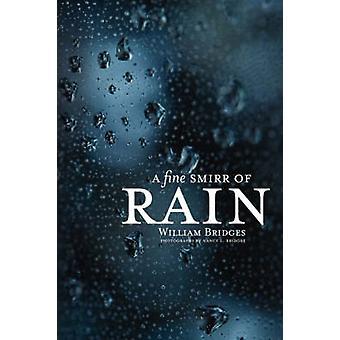 A Fine Smirr of Rain by Bridges & William & PhD