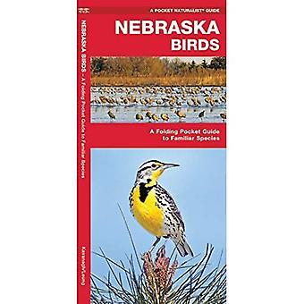 Nebraska Birds: An Introduction to Familiar Species