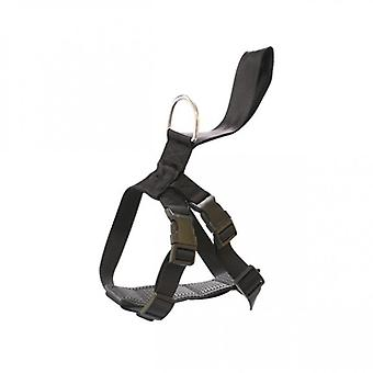 Arppe Safety harness Car And Walk (Dogs , Transport & Travel , Travel & Car Accessories)