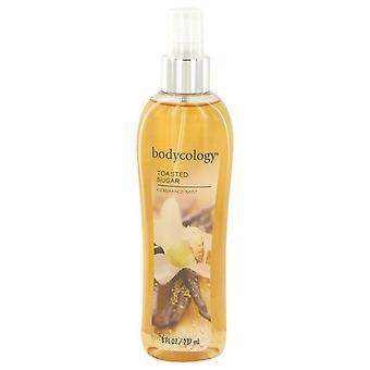 Bodycology Toasted Sugar by Bodycology Fragrance Mist Spray 8 oz / 240 ml (Women)
