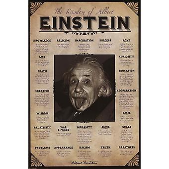 Albert Einstein - viisautta lainaus Juliste Tulosta (24 x 36)