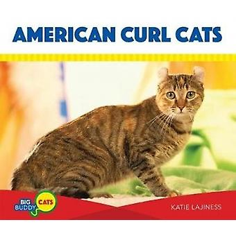 American Curl Cats by Katie Lajiness - 9781532111952 Book