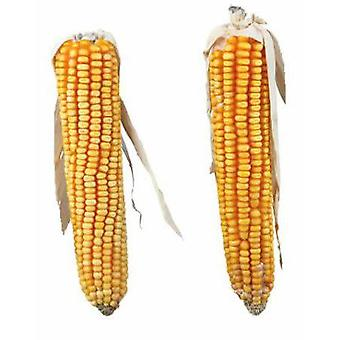 Trixie Maize Cobs for rodents (Small pets , Treats)