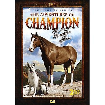 Adventures of Champion (1955-56) [DVD] USA import