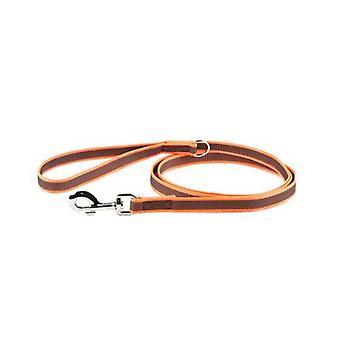 "Julius-K9 Color & Grey Super-Grip Leash orange-GreyWidth (0.7"" / 20mm) Length (6ft / 1.8 m) With Handle and ""D"" ring , Max for 110lb/ 50 kg Dog"
