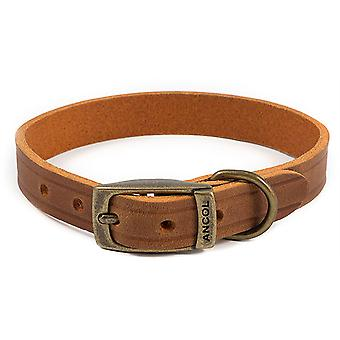 Ancol Heritage Latigo Leather Collar - Chestnut - 25mm x 45-54cm (Size 6)
