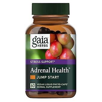 Gaia Kruiden Bijnier Gezondheid Jump Start, 60 Caps