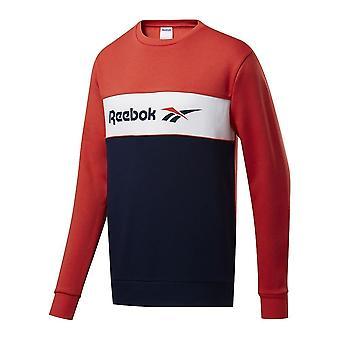 Reebok Classics Linear Crew FJ3347 universella året män sweatshirts