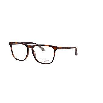 Ted Baker Carlson TB8208 106 Tortoise Glasses