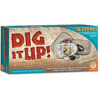 Mindware - dig it up! - fossils & minerals