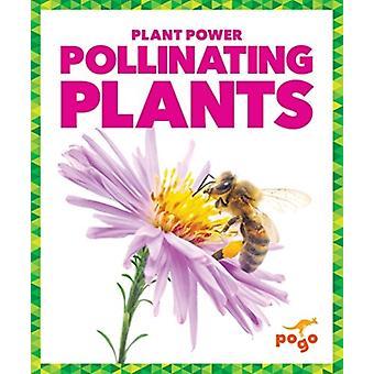 Pollinating Plants by Karen Latchana Kenney