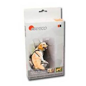 Nayeco 犬の安全ハーネス ドライブ M (犬、交通・旅行、旅行・ カーアクセサリー)