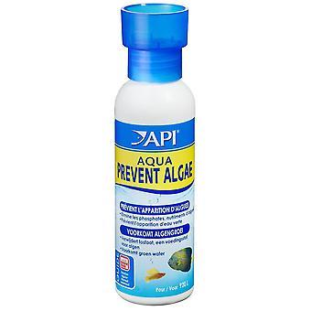 API Api Aqua Prevent Algae 118Ml (Fish , Maintenance , Water Maintenance)