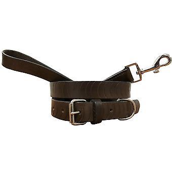 Bradley crompton genuine leather matching pair dog collar and lead set cdkupb027