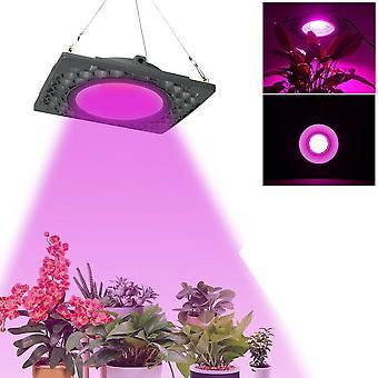 1000wフルスペクトルは、温室植物のための野菜種子光を育てる導いた