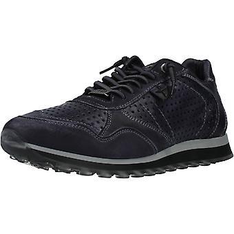 Cetti Sport / C848 Color Atracita Shoes