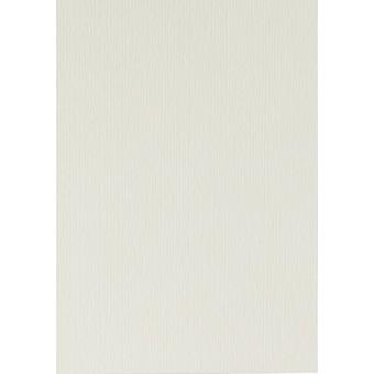 Papicolor 6X Cardboard 210X297mm-A4 Carnation-White
