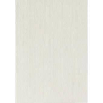 Papicolor 6X Cartón 210X297mm-A4 Clavenado-Blanco