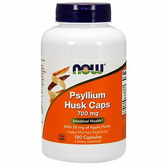 Now Foods Psyllium Husk, 700mg, 180 Kapseln