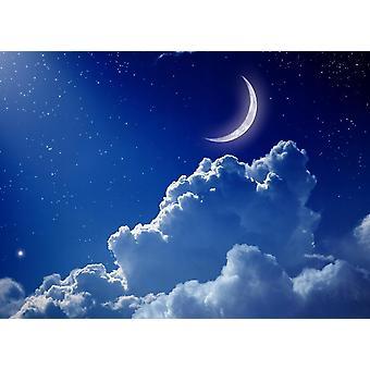 Fondo de pantalla Mural Cielo Nocturno con Luna
