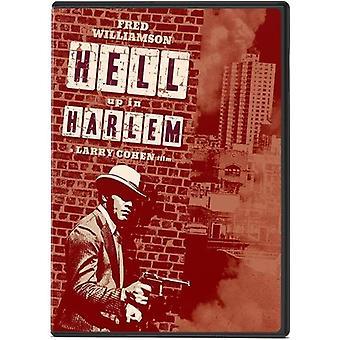 Hell Up i Harlem [DVD] USA import
