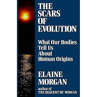 Evolutionens ärr: Vad våra kroppar berättar för oss om mänskligt ursprung