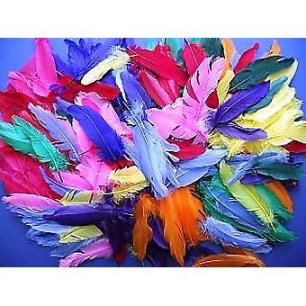 350 Surtido 12cm Plumas para Artesanía para Niños A Granel