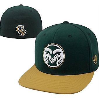 Colorado State Rams NCAA blår Slam Flat Bill Stretch monteret Hat