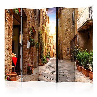 Room Divider - Colourful Street in Tuscany II [Room Dividers]