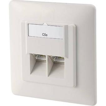 Digitus DN-9001-N Netzwerkausgang Flush mount Einsatz mit Hauptpanel und Rahmen CAT 5e 2 Ports Pure white