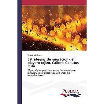 ESTRATEGIAS de migracin del playero rojizo Calidris Canutus Rufa door DAmico Vernica