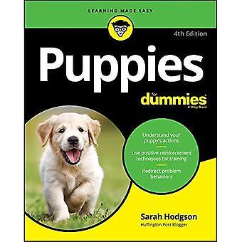 Cachorros para Dummies