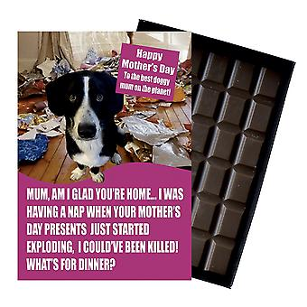 Border Collie Dog Lover  Mother's Day Gift Chocolate Present For Mum Mummy UK