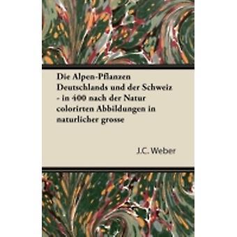 Die AlpenPflanzen Deutschlands Und Der Schweiz  In 400 Nach Der Natur Colorirten Abbildungen in Naturlicher Grosse by Weber & J. C.