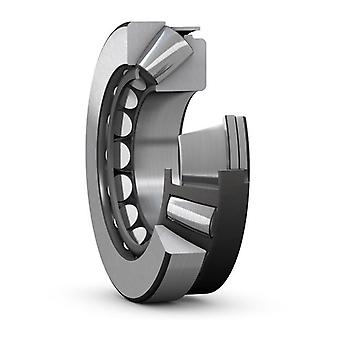 INA RSL183008-A-XL Single Row Cylindrical Roller Bearing 21x61.74x40mm