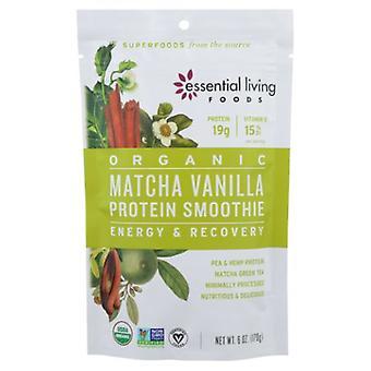 Essential Living Protein Smoothie Matcha Vanilla, 6 Oz