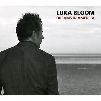 Luka Bloom - Dreams in America [CD] USA import
