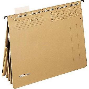 Leitz-bestand weergave Pocket alpha A4 ecru bruin 19830000 1 PC (s)