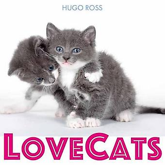 Lovecats by Hugo Ross - 9781785300851 Book