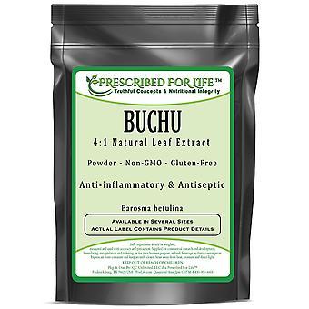 Buchu-4:1 natural extrato de folha de pó (Barosma betulina)