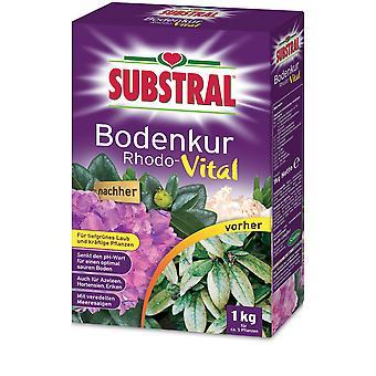 SUBSTRAL® Soil cure Rhodo-Vital, 1 kg