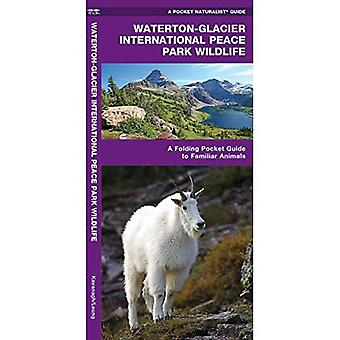Glacier National Park Wildlife: An Introduction to Familiar Species of Birds, Mammals, Reptiles, Amphibians, Fish and Butterflies (Pocket Naturalist - Waterford Press)