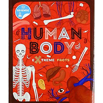 Human Body by Steffi Cavell-Clarke - 9781912502332 Book